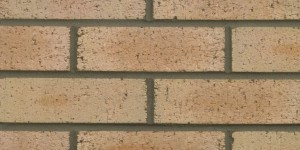 FORTERRA Brindley Buff Brick - Butterley Range