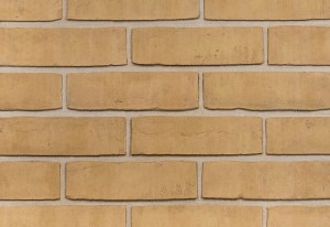 Imperial Brick Traditional Buff Multi Waterstruck Brick Slip