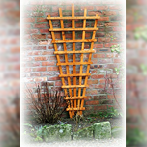 DENBIGH TIMBER - Fan Trellis
