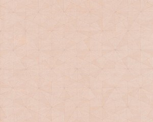 A S Creation Wallpaper - Four Seasons Triangle Pink