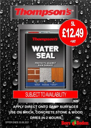 Thompson's 36286 Water Seal 5 Litres