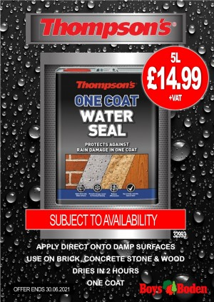 Thompson's 32993 One Coat Water Seal 5 Litres