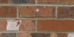 FORTERRA Southdown Multi Brick - Butterley Range