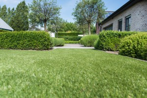 Namgrass Sway - artificial grass
