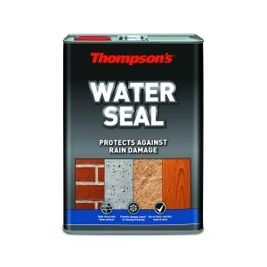 Thompsons Water Seal Clear
