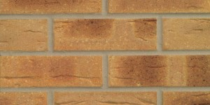 FORTERRA Thoresby Buff Multi Brick - Butterley Range