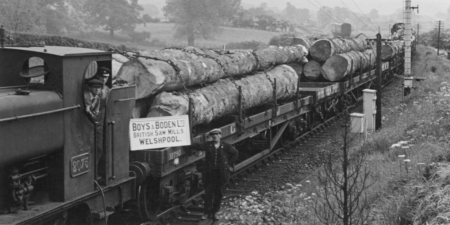 boys and boden train, timber train, oak train