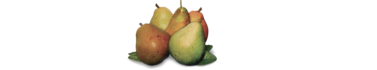 Pear Stairs Logo